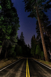 King's Canyon Highway at Night