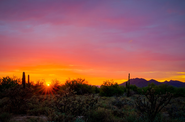 264 - Carefree Desert Sunset