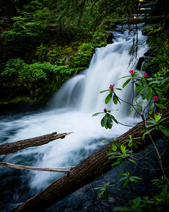 Whitehorse Falls, Oregon